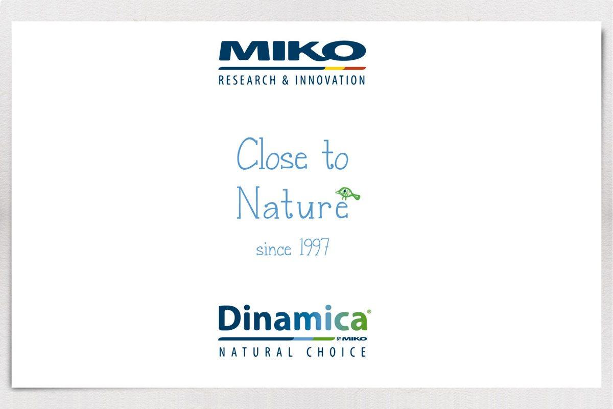dinamica_new