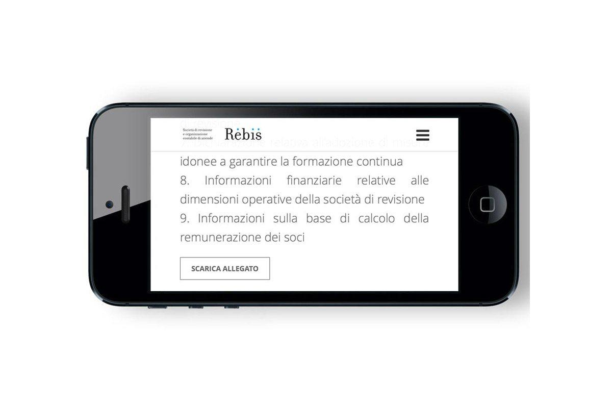 rebis_new6